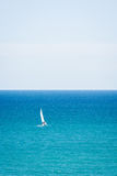 Sailing the sea. A yacht alone sailing by sea on a clear day Stock Images