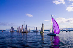 Sailing in Seattle Stock Photography