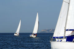 Sailing Ship Yachts. Fully crewed yachts out sailing all with white sails Royalty Free Stock Image