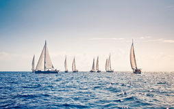 Sailing ship yachts with white sails Stock Photos
