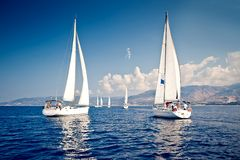 Sailing ship yachts with white sails Stock Images