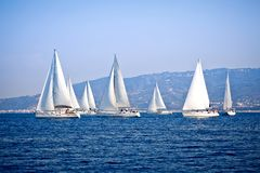 Sailing ship yachts with white sails Royalty Free Stock Image