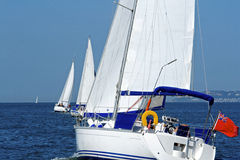 Sailing Ship Yachts With White Sails. Fully crewed yachts out sailing all with white sails Stock Photo