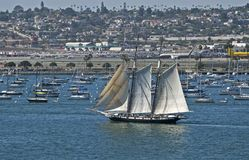 Sailing ships and boats in harbor near the airport. Sailing ships and boats in the San Diego, California harbor near the airport royalty free stock image