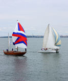 Sailing ships regatta Stock Images