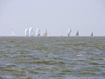 Sailing ships regatta, Nida Stock Photos