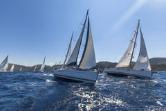 Sailing ships yachts with white sails in the open sea. Stock Photo