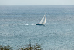Sailing Sloop in the Caribbean VI Royalty Free Stock Images