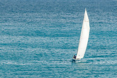 Sailing Sloop with masthead Spinnaker II Royalty Free Stock Image
