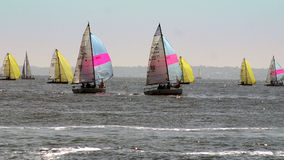 Sailing on the Solent Royalty Free Stock Photography