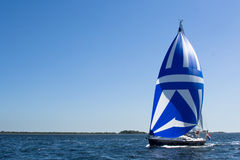 Sailing with a spinnaker Stock Images