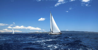 Sailing sport in the wind through the waves. Royalty Free Stock Photography