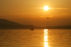 Sailing into the sunset. Sailing into a beautiful sunset on Lake Zug in Switzerland royalty free stock photo
