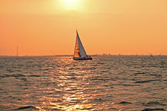 Sailing at sunset on the IJsselmeer in Netherlands Royalty Free Stock Image