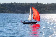 Sailing in Sydney Harbor stock images