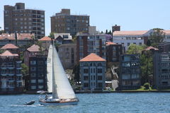 Sailing Sydney Harbour Stock Photography