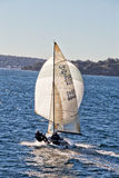 Sailing on Sydney Harbour stock images
