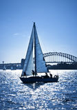 Sailing Sydney Harbour Bridge Australia royalty free stock photography