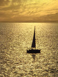 Sailing to the sunset. In golden sea Stock Photos