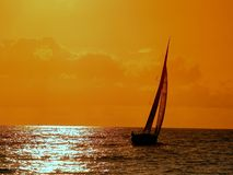 Sailing to the sunset. Saailing in ocean Stock Image
