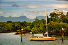 Sailing vessel in a tropical bay in Australia. This picture shows a sailing vessel / ship in a tropical bay in Queensland, Australia. There are mangrove trees in Royalty Free Stock Images