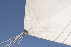 Sailing vessel white sail Royalty Free Stock Photography