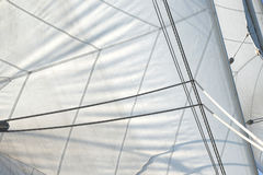 Sailing vessel. White sailing vessel sail and cordage Royalty Free Stock Image