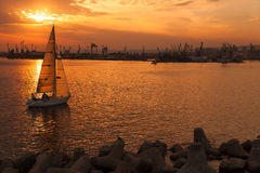 Sailing yacht enters Varna harbor at the sunset Stock Image