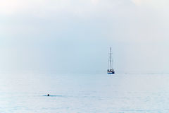 Sailing yacht on the horizon. People are swimming, calm Stock Photos