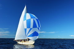 Sailing yacht race Royalty Free Stock Image