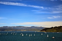 Sailing yacht regatta. And blue sky Stock Photography