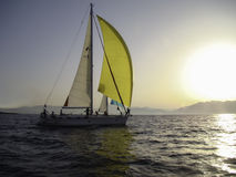 Sailing yacht. With yellow sails to meet the sun Stock Image