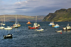 Sailing yachts and fishing boats at their moorings with mountains in the background royalty free stock photos