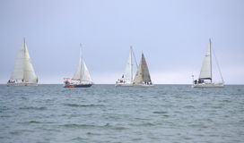 Sailing yachts regatta Royalty Free Stock Photo