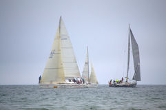 Sailing yachts regatta Royalty Free Stock Image