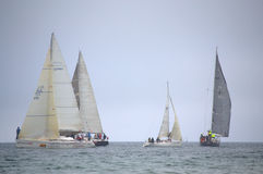 Sailing yachts regatta Royalty Free Stock Photos
