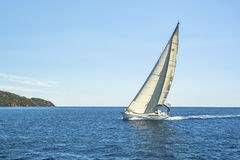 Sailing yachts with white sails. Sport. Stock Photography