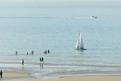 Sailingboat nahe Strand Stockfoto