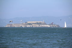 Sailingboat przed Golden Gate Bridge, San Fransisco, Kalifornia, usa Fotografia Royalty Free