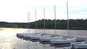 Sailingboats amarró de lado a lado en el lago tranquilo del verano en la salida del sol almacen de video
