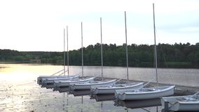 Sailingboats moored side by side on tranquil summer lake at sunrise. A row of small sailing boats lay moored, side by side, in a tranquil bay of lake Malaren, a stock video