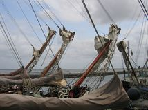 sailingships 免版税库存图片
