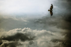 Sailor of the clouds Royalty Free Stock Photos