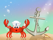Sailor crab Stock Images