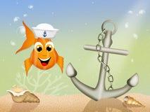 Sailor fish Stock Photo