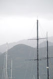 Sailor's masts Stock Image