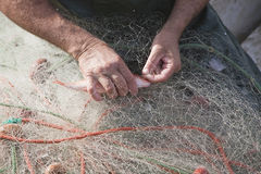Sailor taking a fish of their fishing nets in the port of Estepona Stock Images