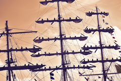 Sailors at the mast of a tall ship regatta. Stock Photo