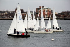 Sailors out on Boston Harbor, March 1st,2014 Royalty Free Stock Images