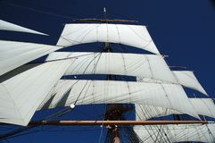 Sails. From historic boat in San Diego, against clear blue sky Royalty Free Stock Photography